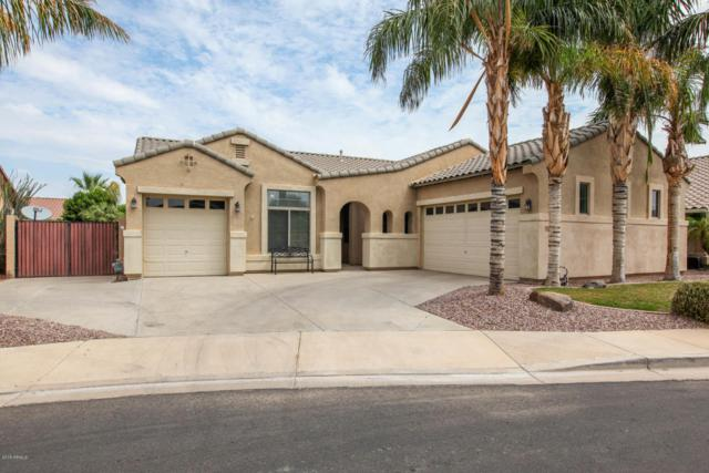 756 E Blue Ridge Way, Chandler, AZ 85249 (MLS #5808029) :: Realty Executives