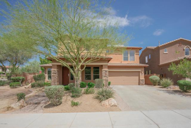 27340 N Whitehorn Trail, Peoria, AZ 85383 (MLS #5808033) :: The Worth Group