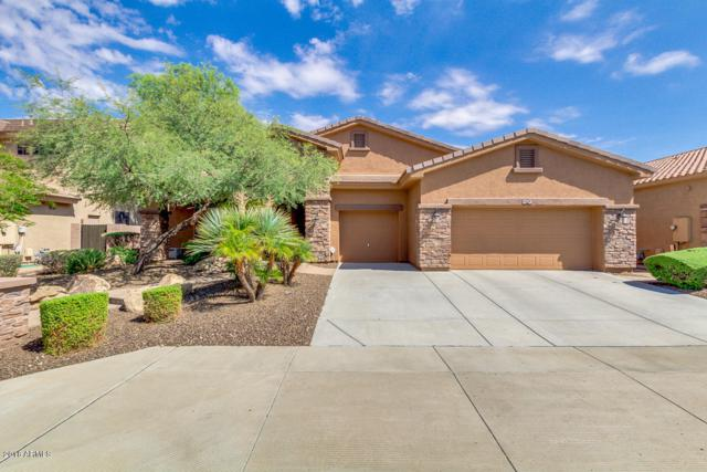 2018 W Blaylock Drive, Phoenix, AZ 85085 (MLS #5808039) :: Yost Realty Group at RE/MAX Casa Grande