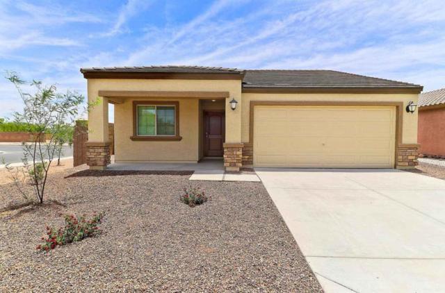 8563 S 253RD Avenue, Buckeye, AZ 85326 (MLS #5808064) :: Five Doors Network