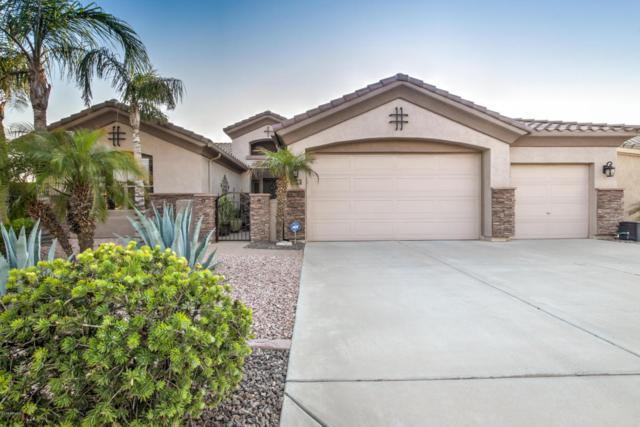 1240 S Eucalyptus Place, Chandler, AZ 85286 (MLS #5808065) :: Realty Executives