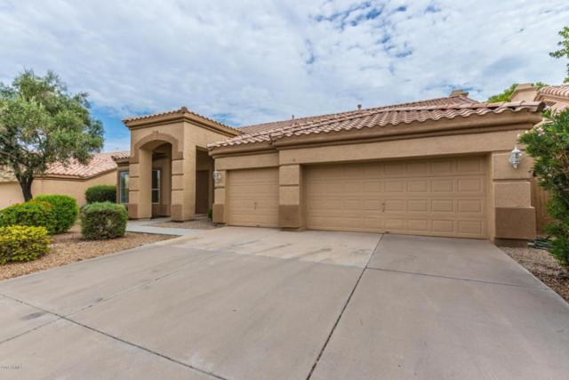 1444 W Straford Avenue, Gilbert, AZ 85233 (MLS #5808070) :: Realty Executives