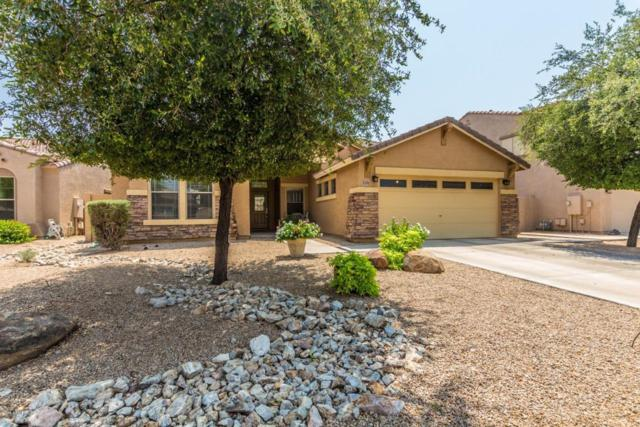 3391 E Canary Way, Chandler, AZ 85286 (MLS #5808087) :: Realty Executives