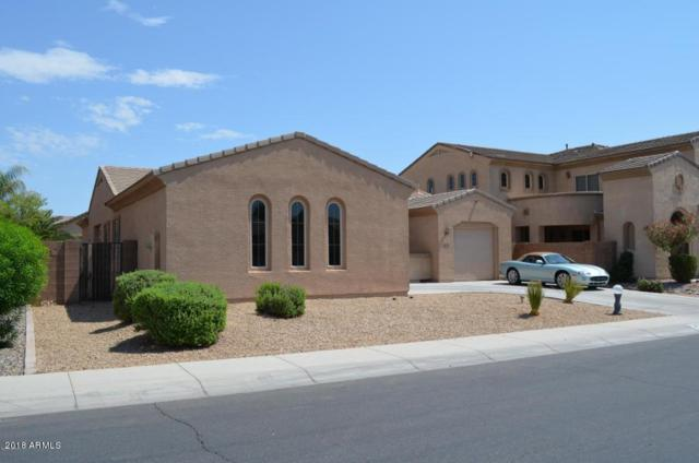 2558 E Desert Broom Place, Chandler, AZ 85286 (MLS #5808093) :: Realty Executives