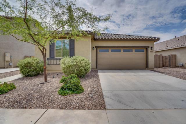 21229 E Cherrywood Drive, Queen Creek, AZ 85142 (MLS #5808094) :: Realty Executives