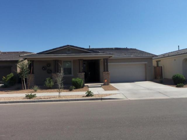 22483 E Munoz Street, Queen Creek, AZ 85142 (MLS #5808098) :: Realty Executives