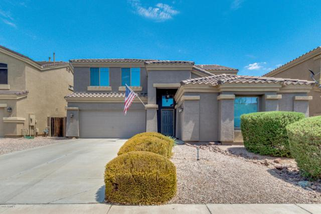 2444 E Creedance Boulevard, Phoenix, AZ 85024 (MLS #5808135) :: Realty Executives