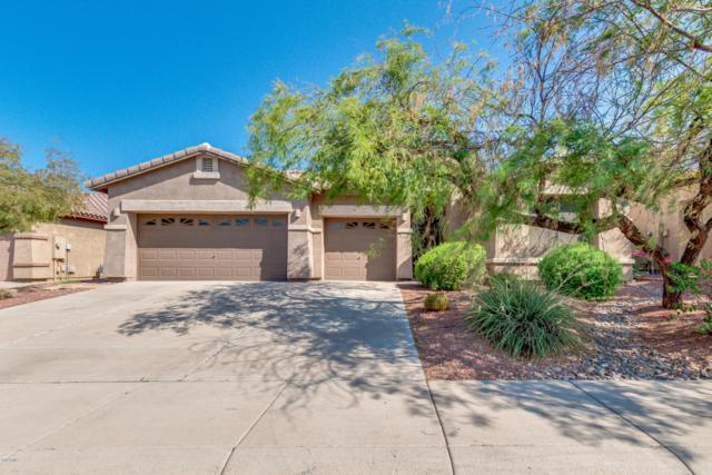 18455 W Western Star Boulevard, Goodyear, AZ 85338 (MLS #5808140) :: Occasio Realty