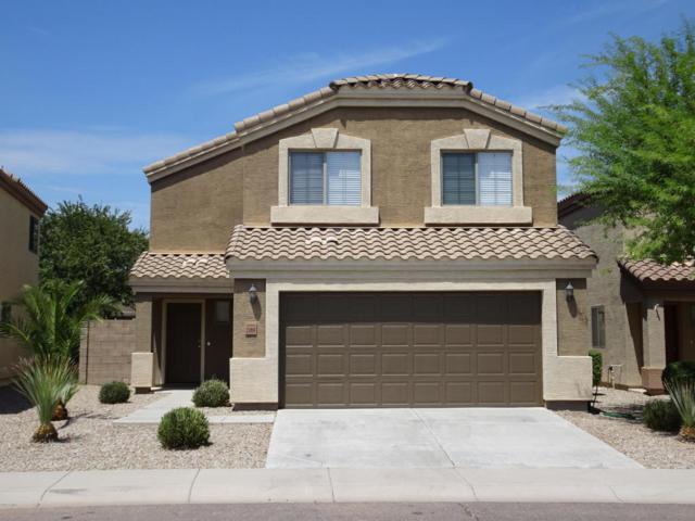 23858 N Greer Loop, Florence, AZ 85132 (MLS #5808144) :: Yost Realty Group at RE/MAX Casa Grande