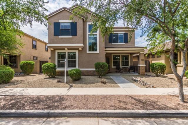 3289 E Ivanhoe Street, Gilbert, AZ 85295 (MLS #5808159) :: Realty Executives
