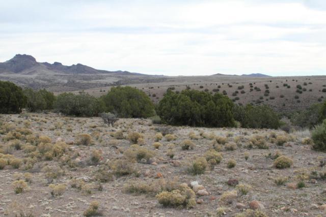 Lot 209 Blue Sky Road, Wikieup, AZ 85360 (MLS #5808162) :: Realty Executives