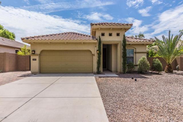 2747 E Canyon Creek Drive, Gilbert, AZ 85295 (MLS #5808179) :: Gilbert Arizona Realty