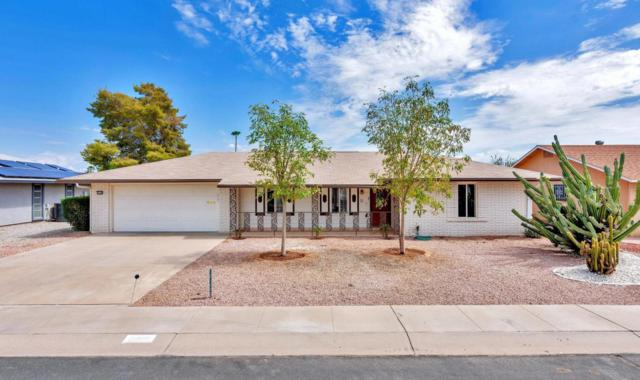 10108 W Oak Ridge Drive, Sun City, AZ 85351 (MLS #5808200) :: The Worth Group