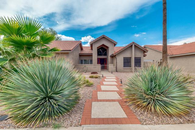 1920 E Vinedo Lane, Tempe, AZ 85284 (MLS #5808399) :: Gilbert Arizona Realty