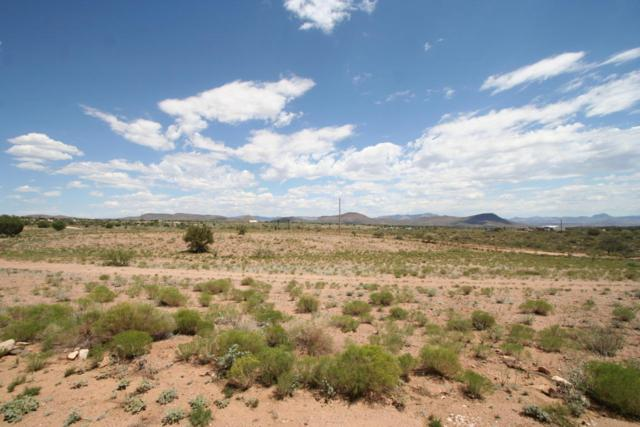 Lot 62 Stephan Road, Kingman, AZ 86401 (MLS #5808412) :: Brett Tanner Home Selling Team