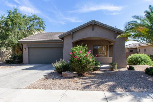 16074 W Banff Lane, Surprise, AZ 85379 (MLS #5808417) :: The Worth Group