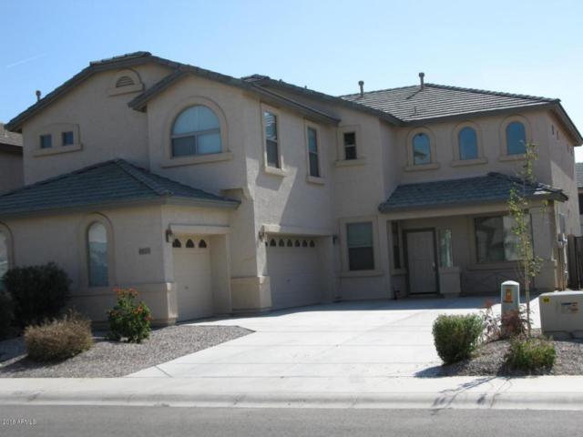 45113 W Buckhorn Trail, Maricopa, AZ 85139 (MLS #5808463) :: Yost Realty Group at RE/MAX Casa Grande