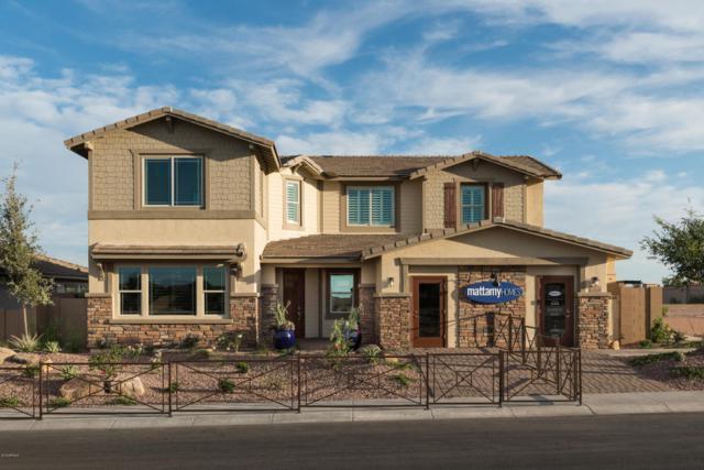 13845 W Harvest Avenue, Litchfield Park, AZ 85340 (MLS #5808466) :: Five Doors Network