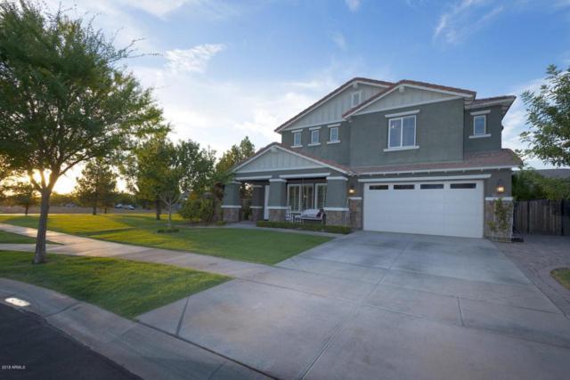 3824 E Mesquite Street, Gilbert, AZ 85296 (MLS #5808479) :: Occasio Realty