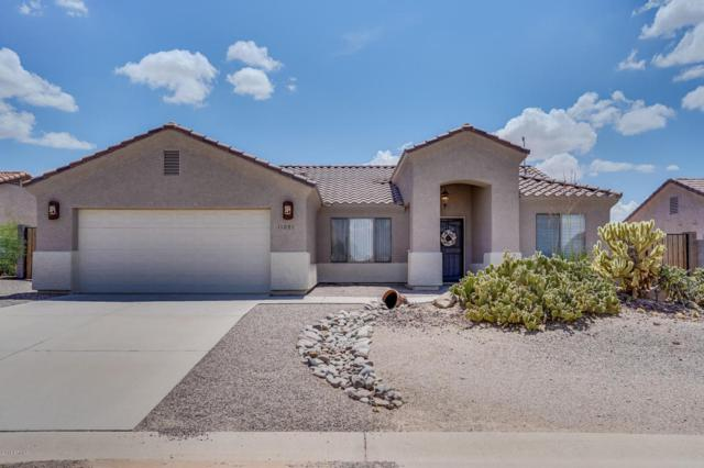 11091 W Cove Drive, Arizona City, AZ 85123 (MLS #5808508) :: Yost Realty Group at RE/MAX Casa Grande