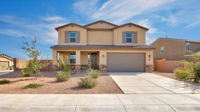 639 W Glen Canyon Drive, San Tan Valley, AZ 85140 (MLS #5808528) :: Gilbert Arizona Realty