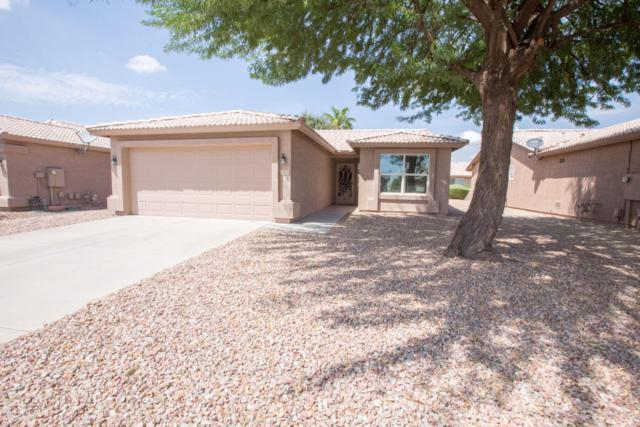 1442 E Torrey Pines Lane, Chandler, AZ 85249 (MLS #5808535) :: Yost Realty Group at RE/MAX Casa Grande