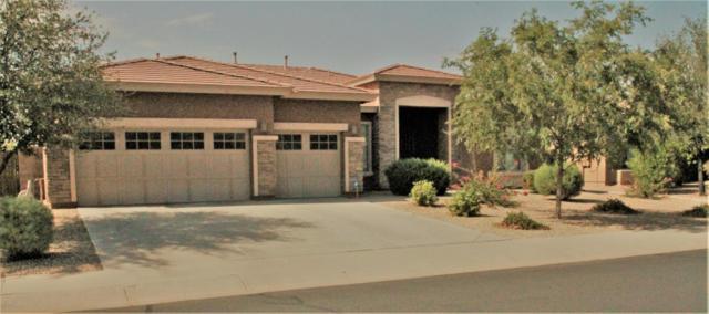 15136 W Pierson Street, Goodyear, AZ 85395 (MLS #5808595) :: Five Doors Network