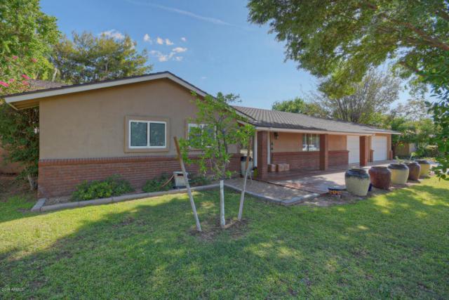 329 W Butler Drive, Phoenix, AZ 85021 (MLS #5808599) :: Yost Realty Group at RE/MAX Casa Grande