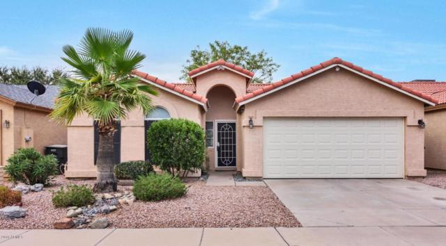 8423 W Berkeley Road, Phoenix, AZ 85037 (MLS #5808601) :: The Worth Group