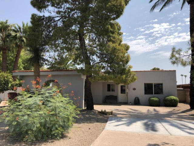 4437 N 86TH Street, Scottsdale, AZ 85251 (MLS #5808617) :: Yost Realty Group at RE/MAX Casa Grande