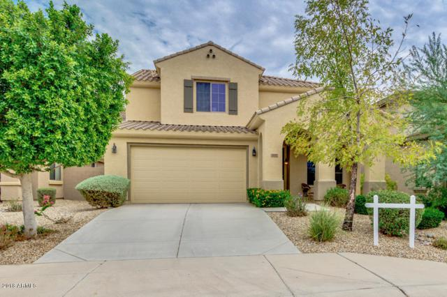 30197 N 71ST Avenue, Peoria, AZ 85383 (MLS #5808646) :: The Luna Team