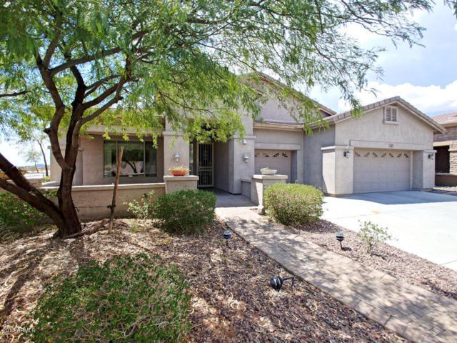 26806 N 24TH Lane, Phoenix, AZ 85085 (MLS #5808666) :: Gilbert Arizona Realty
