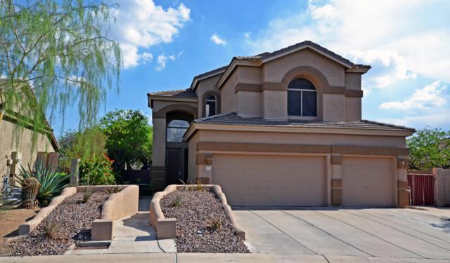 7755 E Western Hills Street, Mesa, AZ 85207 (MLS #5808669) :: Yost Realty Group at RE/MAX Casa Grande