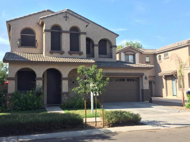 3697 E Stampede Drive, Gilbert, AZ 85297 (MLS #5808674) :: Yost Realty Group at RE/MAX Casa Grande