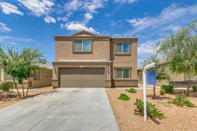 4594 E Jadeite Drive, San Tan Valley, AZ 85143 (MLS #5808681) :: Occasio Realty