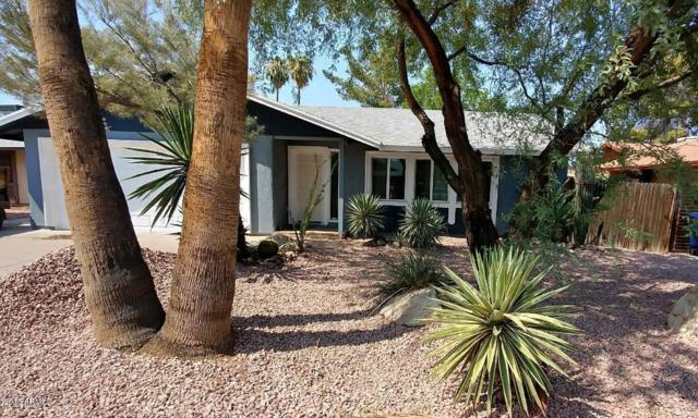 510 E Pegasus Drive, Tempe, AZ 85283 (MLS #5808729) :: Yost Realty Group at RE/MAX Casa Grande