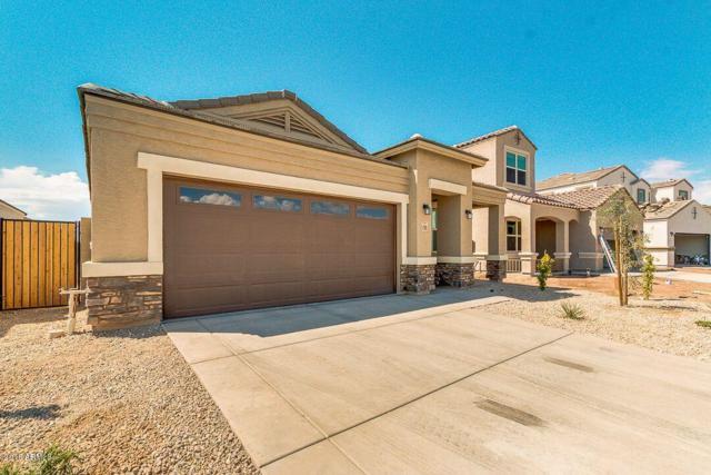 41878 W Manderas Lane, Maricopa, AZ 85138 (MLS #5808743) :: Yost Realty Group at RE/MAX Casa Grande