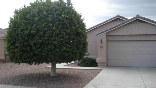 16464 N 137TH Drive, Surprise, AZ 85374 (MLS #5808748) :: Devor Real Estate Associates