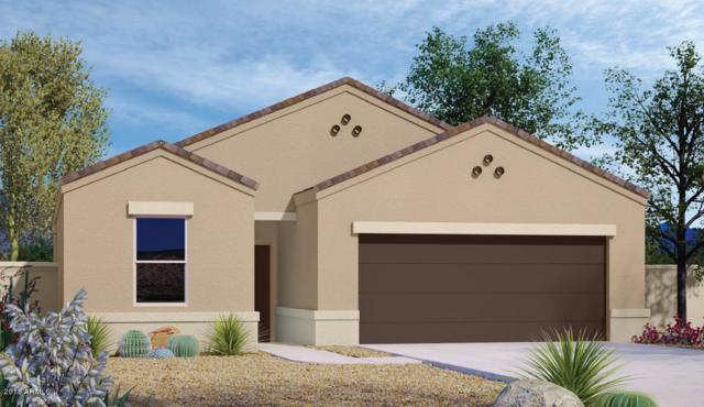 2394 E San Gabriel Trail, Casa Grande, AZ 85194 (MLS #5808754) :: Lifestyle Partners Team