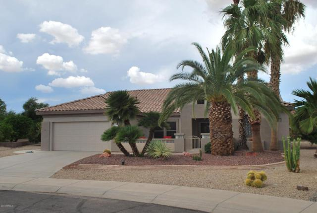 20315 N Windy Walk Court, Surprise, AZ 85374 (MLS #5808767) :: Kortright Group - West USA Realty