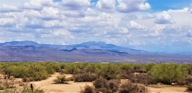 29200 N 156th Street, Scottsdale, AZ 85262 (MLS #5808771) :: Brett Tanner Home Selling Team