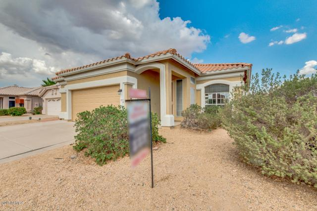 11650 W Pincushion Court, Surprise, AZ 85378 (MLS #5808777) :: Kortright Group - West USA Realty