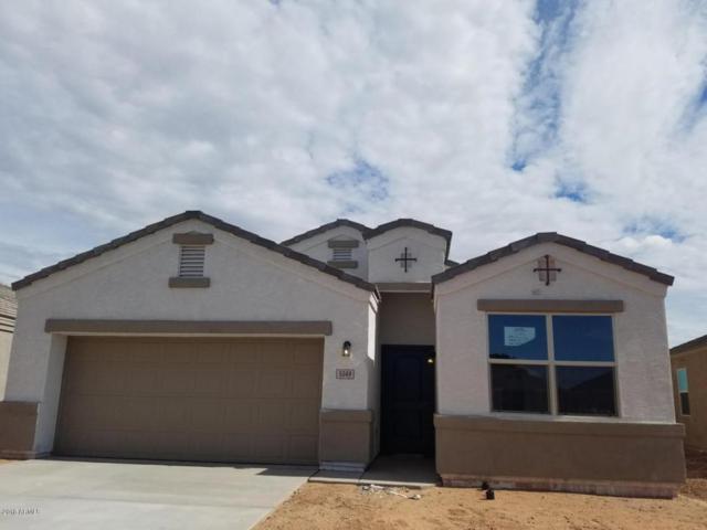 42025 W Manderas Lane, Maricopa, AZ 85138 (MLS #5808780) :: Yost Realty Group at RE/MAX Casa Grande
