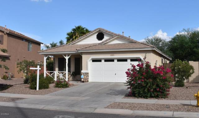 3875 S Stallion Drive, Gilbert, AZ 85297 (MLS #5808795) :: Yost Realty Group at RE/MAX Casa Grande