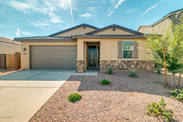 37263 N El Morro Trail, San Tan Valley, AZ 85140 (MLS #5808815) :: Yost Realty Group at RE/MAX Casa Grande