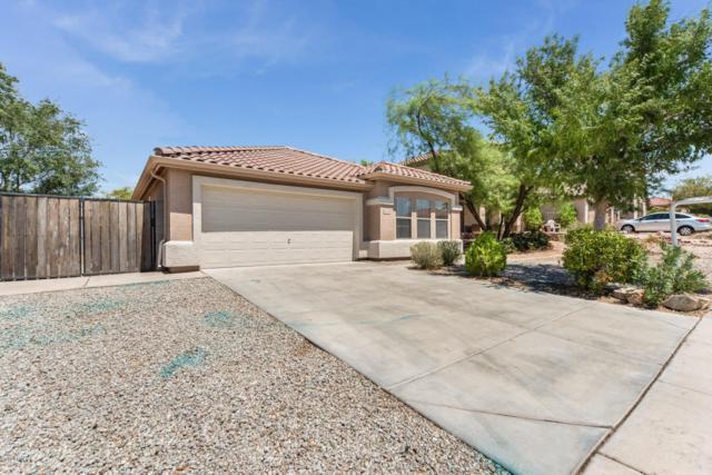 10614 W Via Del Sol Drive, Peoria, AZ 85383 (MLS #5808823) :: Devor Real Estate Associates