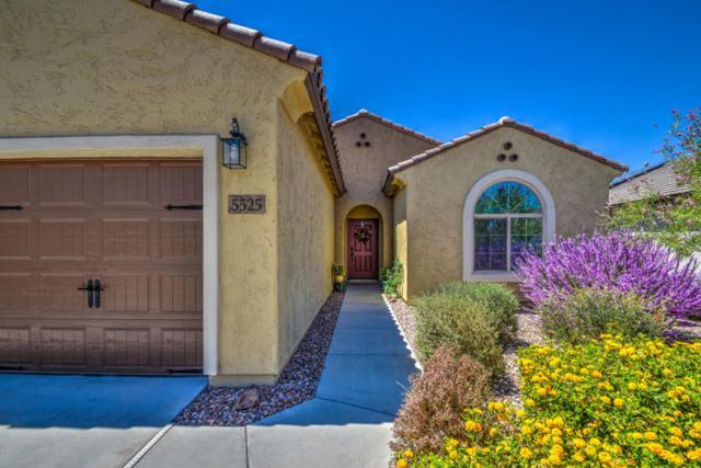 5525 W Victory Way, Florence, AZ 85132 (MLS #5808825) :: Yost Realty Group at RE/MAX Casa Grande
