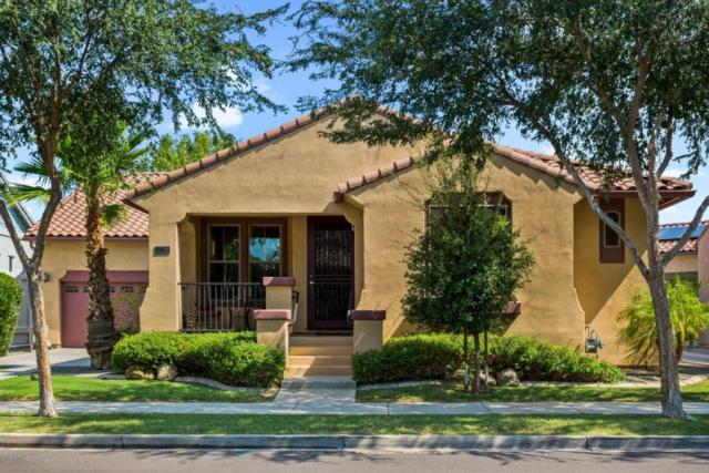 2776 E Virginia Street, Gilbert, AZ 85296 (MLS #5808830) :: Yost Realty Group at RE/MAX Casa Grande