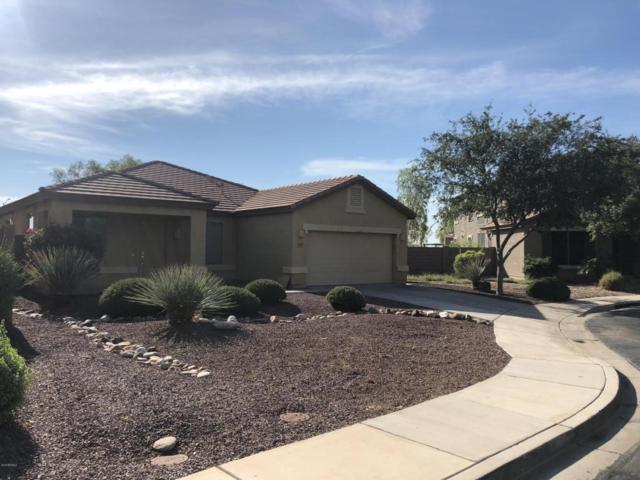 15811 N 168TH Avenue, Surprise, AZ 85388 (MLS #5808832) :: Kortright Group - West USA Realty