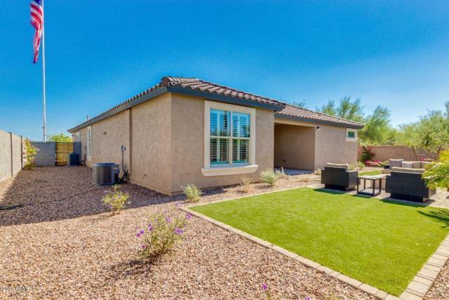 30858 N 126TH Drive, Peoria, AZ 85383 (MLS #5808877) :: Devor Real Estate Associates